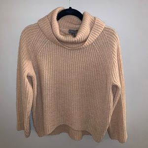J.Crew Point Sur Ribbed Turtleneck Sweater